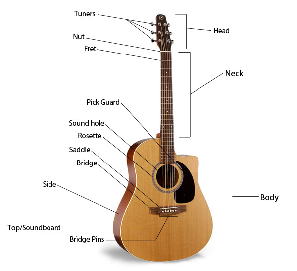 extra geekticular how to pick out an acoustic guitar. Black Bedroom Furniture Sets. Home Design Ideas