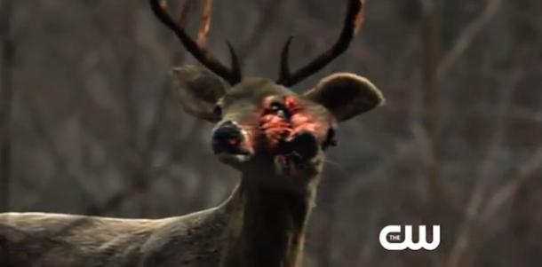 http://www.agentsofguard.com/wp-content/uploads/2014/04/the-100-mutant-deer1.png