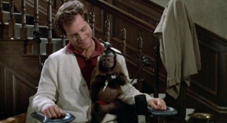 I got me a Monkey!